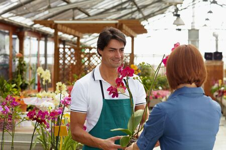 salesperson: rear view of woman shopping in flower shop  Stock Photo
