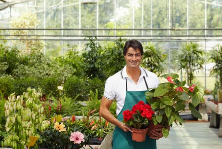 florist shop: portrait of male florist looking at camera and holding plants