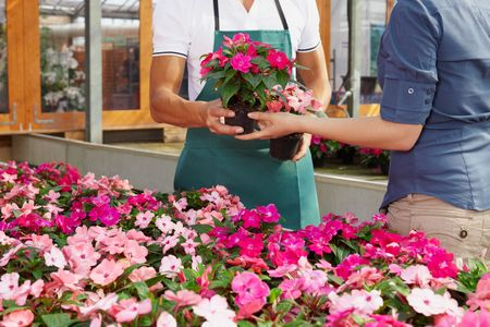 cropped view of woman shopping in flower shop photo
