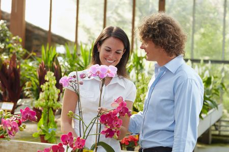 mid adult couple: mid adult couple shopping in garden center
