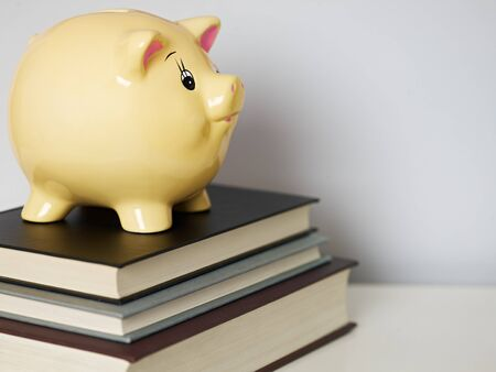 secondhand: yellow piggy bank on second-hand books. Horizontal shape, copy space