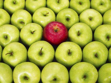 사과: red apple standing out from large group of green apples. Horizontal shape