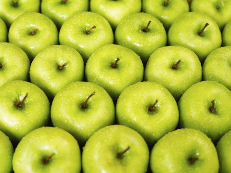 large group of green apples in a row. Horizontal shape photo