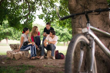 Young people at school, group of four college students doing homeworks in park photo