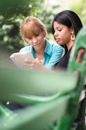 Young women at school, two female university students studying on book in park photo