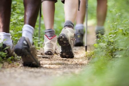 caminando: grupo de hombres y mujeres durante la excursi�n de senderismo en el bosque, caminando en una fila a lo largo de un camino. Ver la secci�n baja Foto de archivo