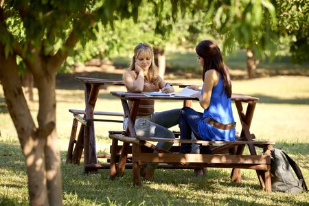 Young women at school, two female friends studying together for college test in park. Full length  photo