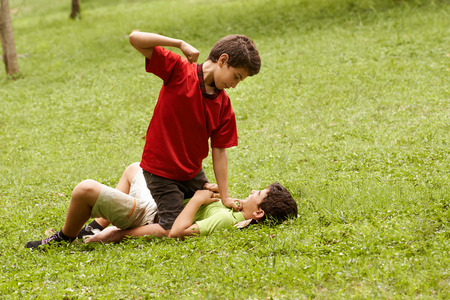 Twee jonge broers vechten en slaan op gras in het park, met oudere jongen zittend op de jongere Stockfoto