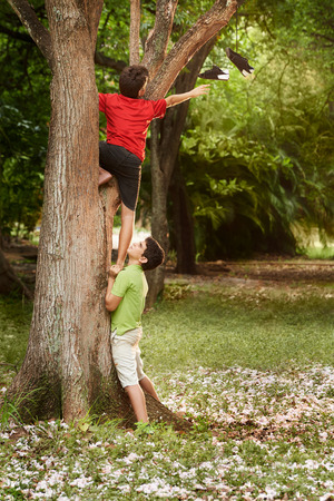 two kids helping each other to climb on tree and reaching for shoes on branch Stock Photo