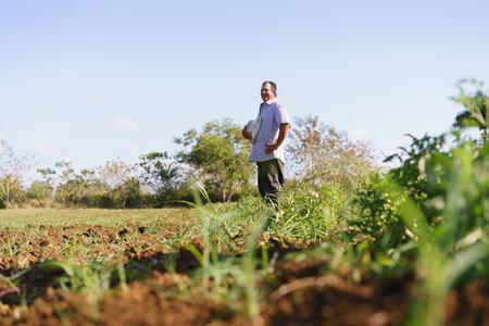 america del sur: La agricultura y cultivos en América Latina. agricultor hispánico de mediana edad que se coloca orgulloso en el campo de tomate, contemplando el suelo y las plantas recién sembradas. Espacio en blanco en el cielo.