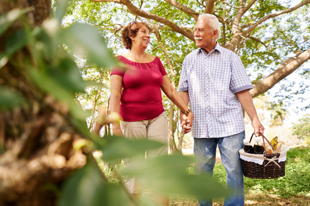 Old couple, elderly man and woman in park. Active retired seniors holding hands and walking in park with a picnic basket Stockfoto