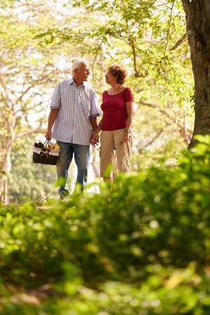 pic nic: Old couple, elderly man and woman in park. Active retired seniors holding hands and walking in park with a picnic basket Stock Photo