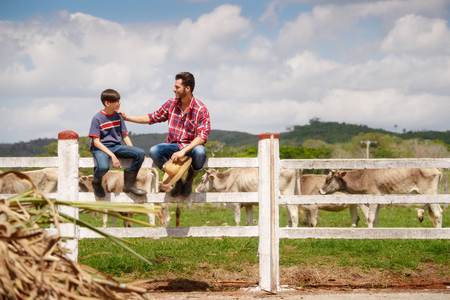 Everyday life for farmer with cows in the countryside. Peasant work in South America with livestock in family country ranch. Happy father and son smiling and spending time together.