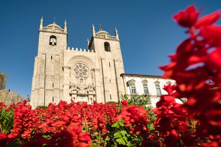 View Of The Cathedral of Porto Seen Through Flowers Фото со стока - 139331557