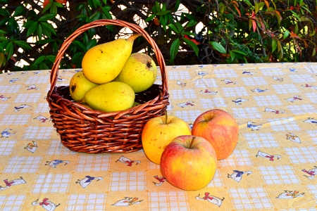 basket of fresh fruit photo