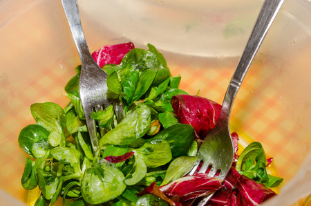 mixed lettuce, rocket, valerian and radicchio salad seasoned with salt and olive oil. excellent side dish for meat dishes.