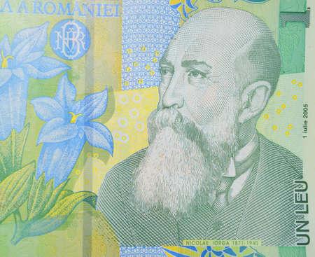 leu: Nicolae Iorga politician on Romanian leu banknote