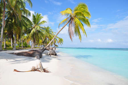 The most beautiful lonely beach in San Blas island,  Central America  Stock Photo