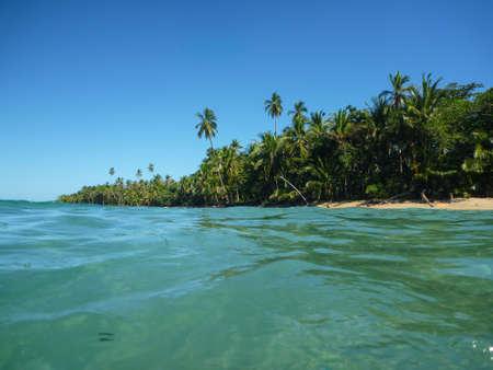 uva: Exotic Beach at Costa Rica. Tropical Adventure. Traveling Central America.