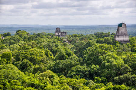 Panorama of Tikal National Park. Adeventure in Guatemala.
