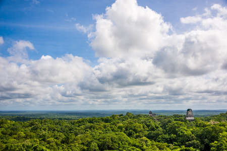 Panorama of Tikal National Park. Adeventure in Guatemala.