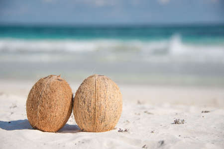 caribbean drink: Open Coconut ready to eat and drink juice. Traveling through Mexico, Caribbean Paradise. Stock Photo