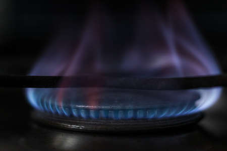 combust: Stove burning with blue flame. Closeup Macro.