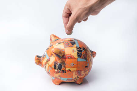 earnings: Cute Piggy for Personal Savings and Earnings. Save money.