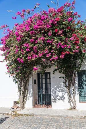 Historic village at Uruguay. Latin American Culture. Stock Photo