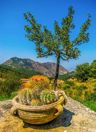 Beautiful Sicilian Landscape