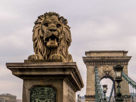 Lion statue, Chain Bridge. In Budapest, Hungary Imagens