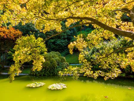 View of the Gardens of the Villa Melzi (Italian: I Giardini di Villa Melzi) in Bellagio, Lake of Como, Italy