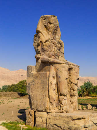 Luxor, Egypt - November 4, 2019: View of the gigantic Colossi of Memnon (left statue) in the Mortuary Temple of Amenhotep III. Éditoriale