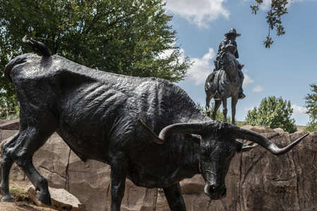 Cattle drive sculpture in the city of Dallas, texas