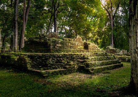 Ruïnes van woonwijk van Maya Ruins - Copan Archeologische Site, Honduras Stockfoto
