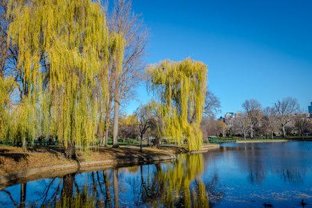 Boston Public Garden - Boston, Massachusetts, USA Editorial