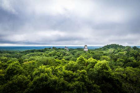 Panoramic view of rainforest and top of Mayan temples at Tikal National Park - Guatemala Stock Photo