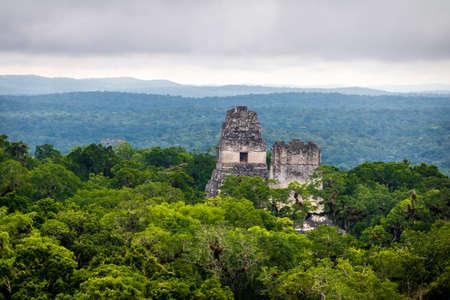 Tikal 국립 공원에서 마야 사원 꼭대기 - 과테말라 스톡 콘텐츠