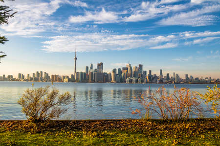 building cn tower: Toronto skyline with autumn vegetation - Toronto, Ontario, Canada