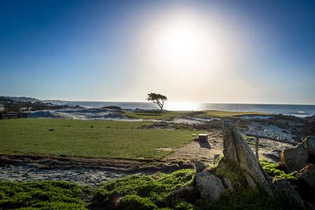 View along famous 17 Mile Drive - Monterey, California, USA
