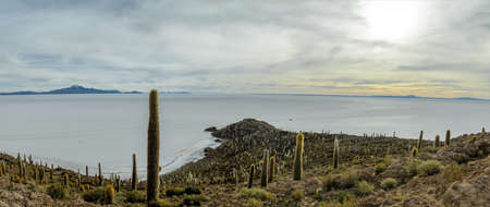 incahuasi: Panoramic view of Incahuasi Cactus Island in Salar de Uyuni salt flat - Potosi Department, Bolivia Stock Photo
