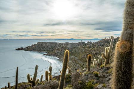 Incahuasi Cactus Island in Salar de Uyuni salt flat - Potosi Department, Bolivia