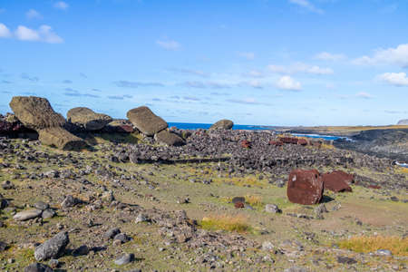 rapanui: Fallen Moai face down Statues at Ahu Akahanga - Easter Island, Chile