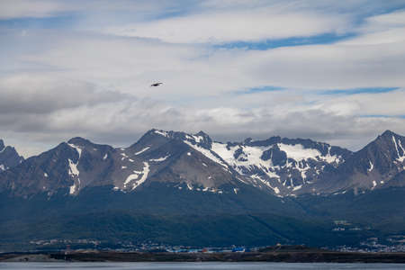 Chilean Skua Bird flying over Mountains in Beagle Channel - Ushuaia, Tierra del Fuego, Argentina