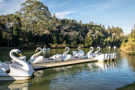 Lago Negro (Black Lake) with Swan Pedal Boats - Gramado, Rio Grande do Sul, Brazil Reklamní fotografie