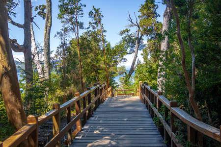 Boardwalk path at Arrayanes National Park - Villa La Angostura, Patagonia, Argentina Archivio Fotografico