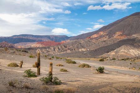 Cardones Cactus and Quebrada del Toro Mountains in Northern Salta Puna - Quebrada del Toro, Salta, Argentina