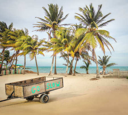 Wooden Cart with Go Slow message in a tropical beach with palm trees - Caye Caulker, Belize