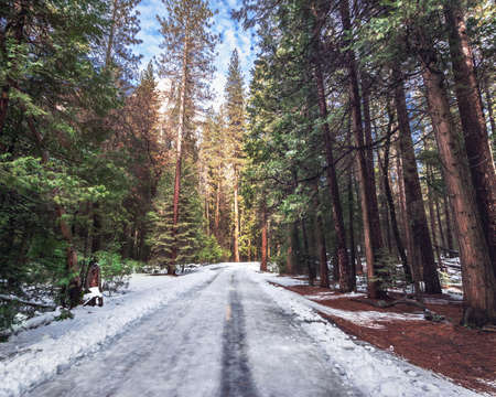 Road covered with snow at winter - Yosemite National Parl, California, USA 写真素材
