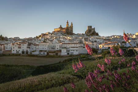 Olvera city with Castle and Cathedral - Olvera, Cadiz Province, Andalusia, Spain